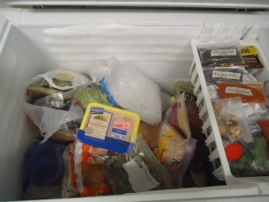 Deep Freeze Unorganized
